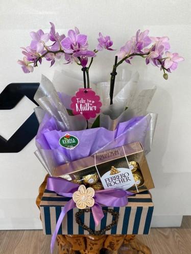 Caixa Moderna Orquídea mini