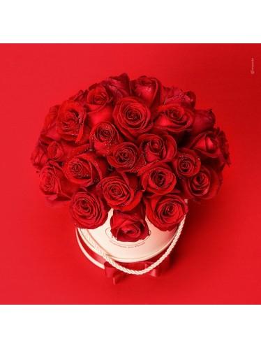 Box Luxo Rosas Vermelhas