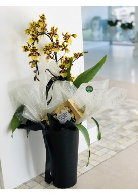 Orquídea Oncydium + Ferrero Rocher
