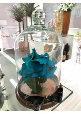 Rosa Eterna Azul P
